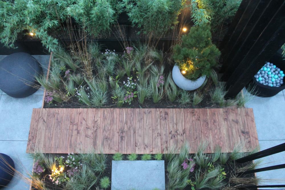 Eigen Huis en Tuin dakterras planten
