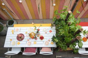 nofruit eigen huis en tuin